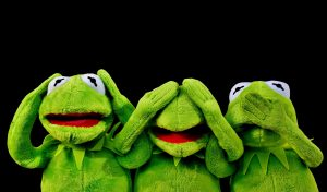 Kermit silence
