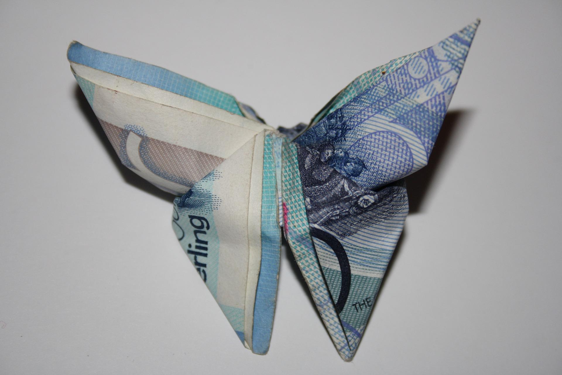 Vlinder van 20 euro
