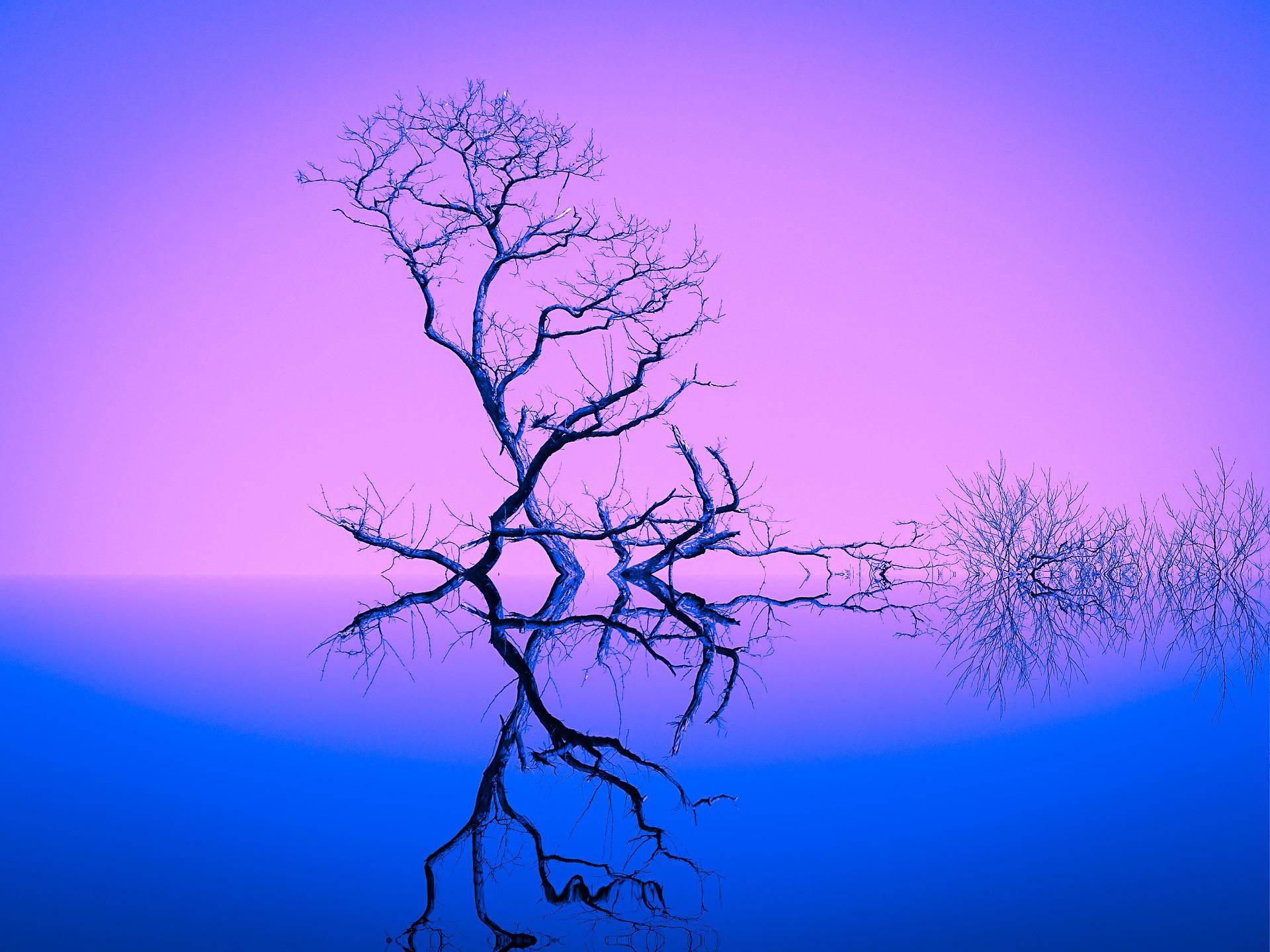 Dig Deeper tree
